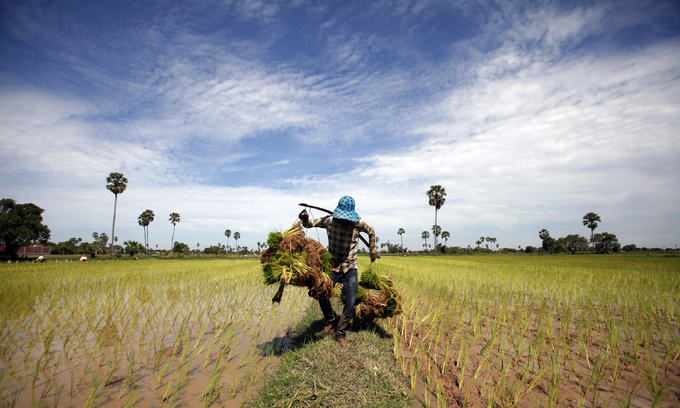 Cambodian farmers sue Thai sugar group Mitr Phol over alleged land grab