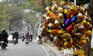 Report paints brighter picture of corruption control in Vietnam