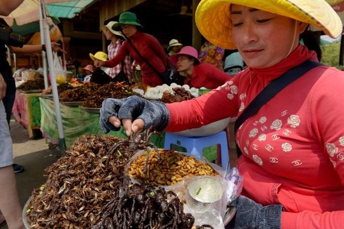 In Cambodia, fears tarantula may go off the menu