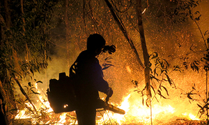 Fire rips through nature reserve in central Vietnam