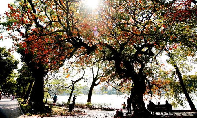 Hanoi breaks into top global destinations on TripAdvisor list
