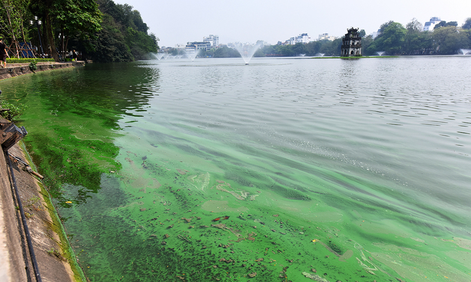 Toxic algae poses threat to Hanoi's iconic Sword Lake
