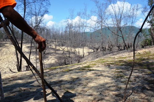 A forest in Binh Dinh has been burned down and locals believe that a wind power project is the culprit. Photo by VnExpress/Pham Linh