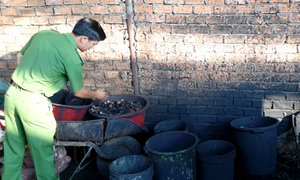 Vietnam detains coffee plant owner for dyeing granules with battery powder