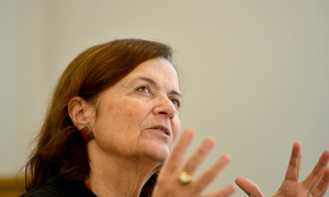 Fulbright University Vietnam assigns new chair to replace controversial predecessor