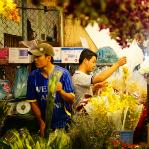 Weekly roundup: Vietnams alcohol ban, beach paradise, bitter divorce and more (Bài clone - 1) - 2