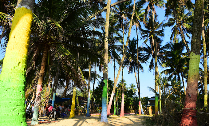 Even the painted coconut trees also help the village more unique.