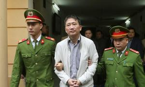 Vietnamese runaway bigwig ditches appeal as corruption fight continues