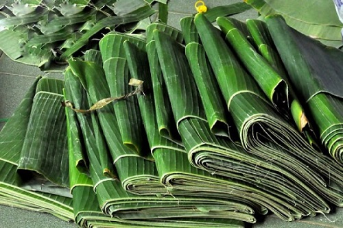 Tropical delicacy: Vietnamese agricultural products rack in big cash at global markets - 4