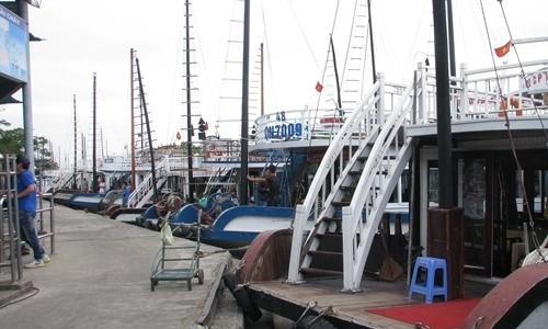 Vietnamese cruise ship suspended after Australian tourist reports 'horrific' service