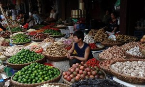China no longer 'easy' on Vietnamese agricultural produce: minister