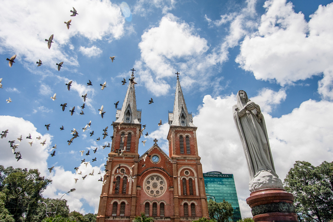 Birds of a feather: Watch pigeons soar above Saigons iconic Notre-Dame cathedral