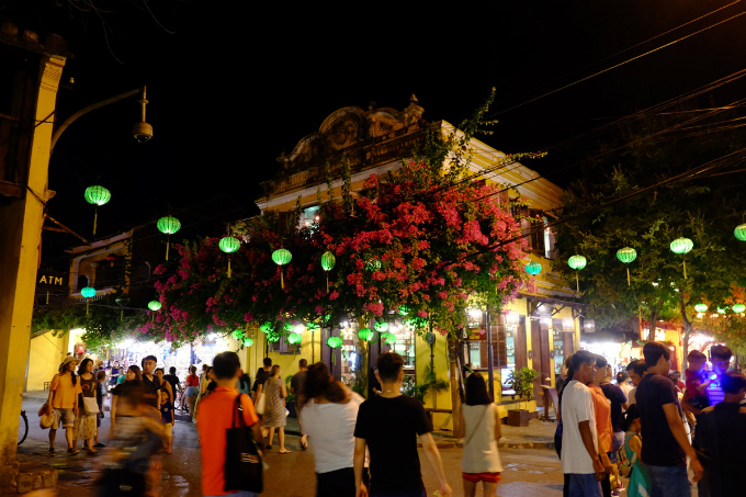 Hoi An enjoys a floral explosion in summer - 7
