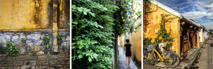 Enraptured Swiss lensman captures beauty and soul of Vietnam - 3