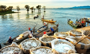 Vietnam, Mekong neighbors urged to lean less on China