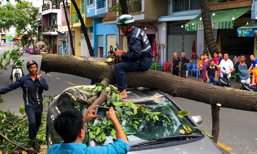 Thunderstorms knock down trees, send Saigon traffic into chaos