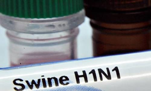 Vietnam reports first human death of swine flu in years