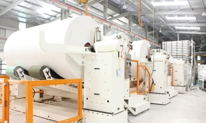 China-Vietnam pulp ventures: A risk that cannot be papered over
