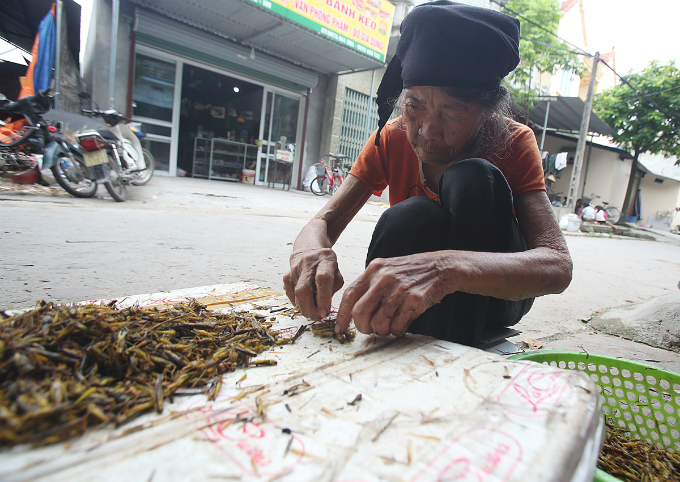 Dang Thi Cam, 89, said she has spends her summer days picking lotus wings with other family members just for fun and a little payment. She gets around VND30,000 for removing wings of 2-3 kilos of locusts in four hours.