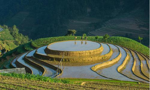 When rice fields sparkle in Vietnam's northern highlands