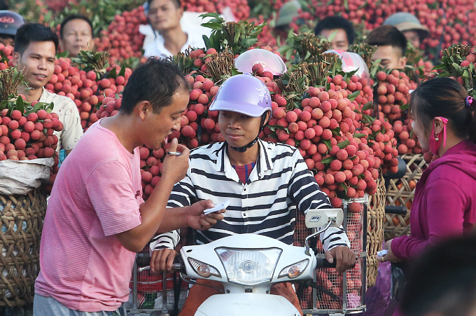 A Chinese trader is using body language to communicate and negotiate price. Locals said that Chinese fruit traders are their biggest buyer.