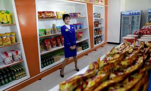 Vietnam to face no FDI competition from North Korea: experts