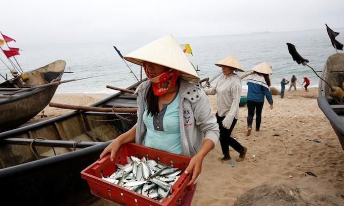 EU set to lift 'yellow card' on Vietnam fisheries next year