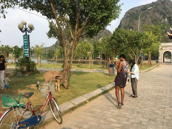 Startup makes it easy for foreigners to tour Vietnam with natives