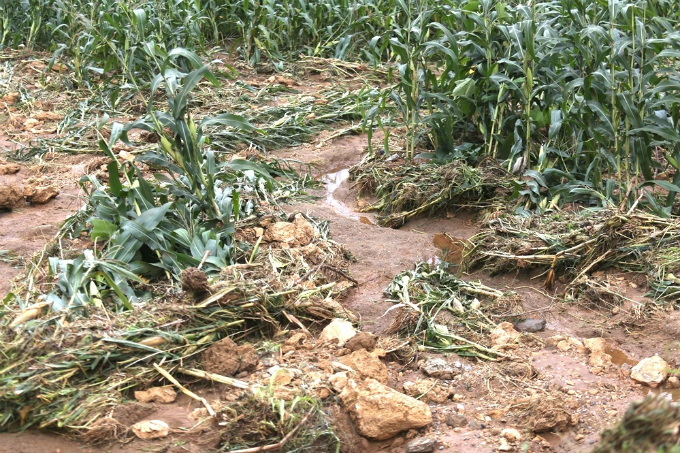 Ha Giang picks up the pieces after floods and landslides - 2