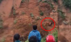 Horrifying moment when landslide swept away two excavators in Vietnam