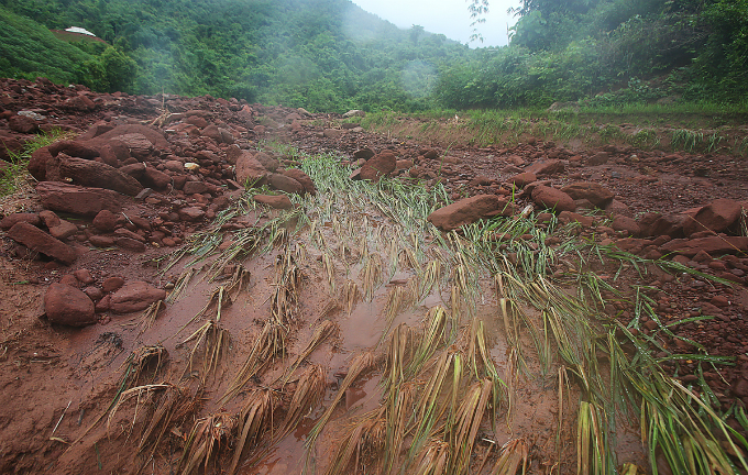 Whats left of a farm after flash floods and landslide have gone. Lai Chau was hit hardest by the disaster triggered by heavy rains as the rainy season arrives in the northern mountainous region. Total death in the three provinces of Lai Chau, Ha Giang and Lao Cai reached 19 people and 11 are missing.