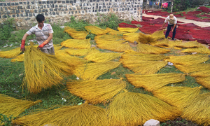 A village in south-central Vietnam rolls out the welcome mats