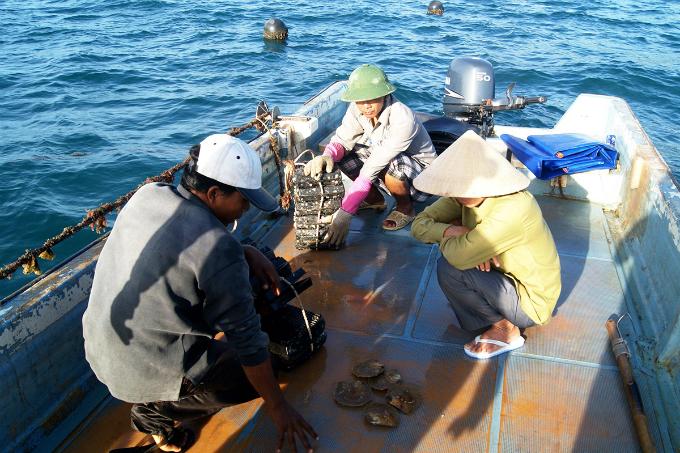 Take a summer trip to Vietnams majestic archipelago - 4