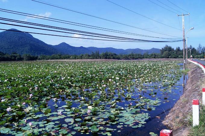 Take a summer trip to Vietnams majestic archipelago - 7