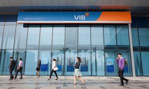 VIB issues bonds to raise capital ahead of Basel II