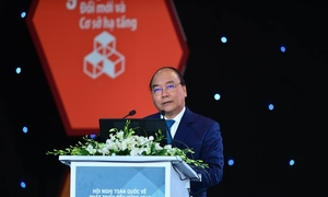 Vietnam should use megatrends to sustain development