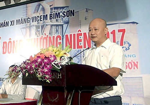 Tran Viet Thang, former general director of Vietnam Cement Industry Corporation (Vicem). Photo by VnExpress
