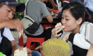 Seeds sown for new durian sales pitch in Vietnam