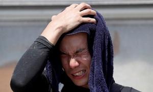 Heatwave blankets Japan, kills 14 people over long weekend