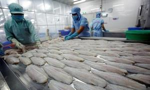 WTO panel to rule on Vietnam complaint on US duties on fish fillets