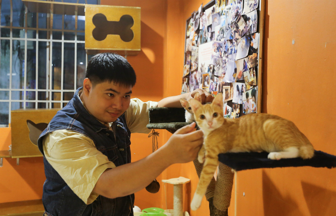The owner, Doan Nhat Minh, said he opened this shop to create a space for animal lovers to foster wild cats.