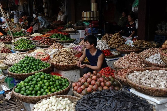 Make loans easier for agriculture investors: Vietnam PM