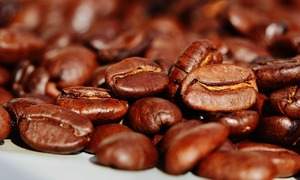 Good weather set to bring cheer to Vietnam coffee farmers