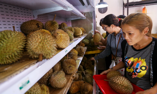 The seeds of a new business sprouts to Saigon