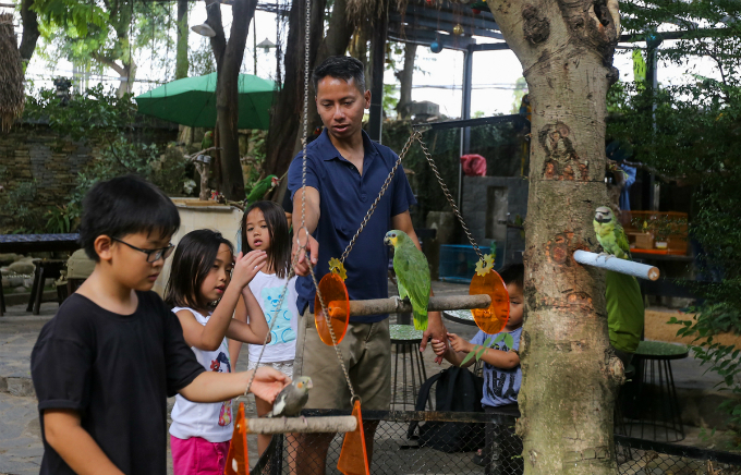 Saigon café offers a squawking time for kids and adults