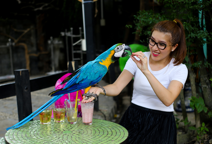 Saigon café offers a squawking time for kids and adults - 5