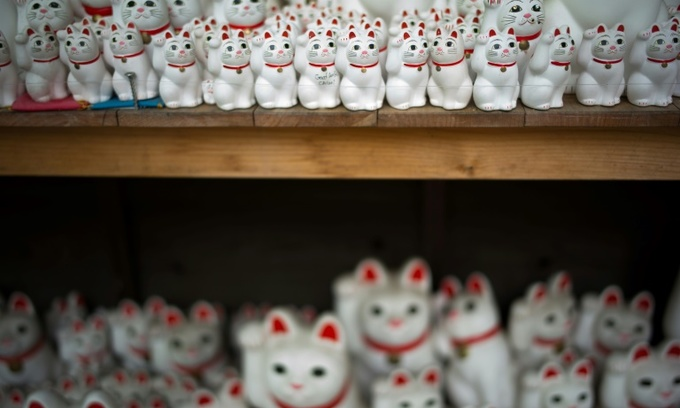 Cat snap: Tokyo 'lucky cat' temple draws Instagrammers