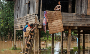 Vietnam's Mekong quandary: settling the sediment issue