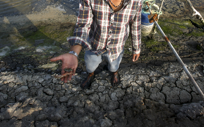 A farmer shows dead fish and dead shrimp on his farm in Mekong Deltas Bac Lieu Province. Photo by Reuters/Kham