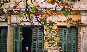 On the way to see Tokyo in fall, I fell for Hanoi